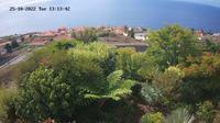 Estreito da Calheta: Madeira - Dagtid