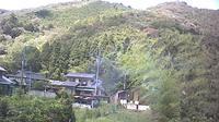 Shiso: Yamasaki - Recent