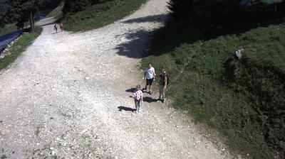 Webcam Poiana Brasov: Partia Drumul Rosu