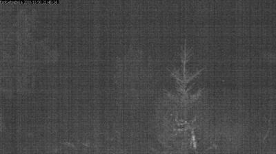 Webkamera Tveitane › South: Kyrkjebygdheia