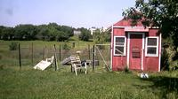 Watertown › North: New York - Farm, chickenhouse - Day time
