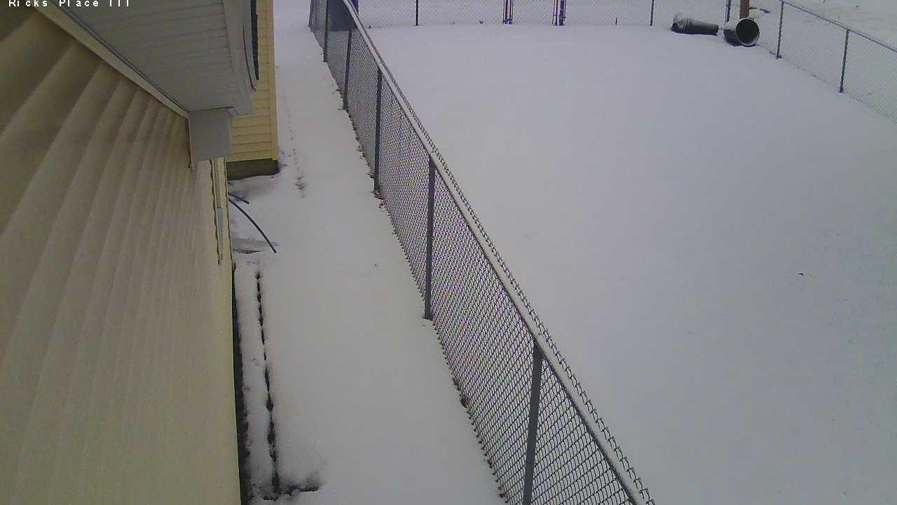 Webcam Peoria Heights: Ricks Place