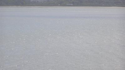 Vue webcam de jour à partir de Aparima: Bayswater