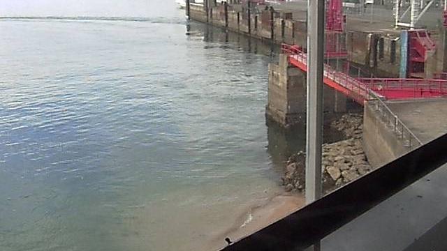 Webkamera Shikoku