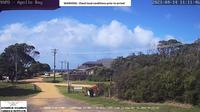 Marengo › East: Apollo Bay - Day time