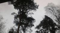 Fassberg › North-East: Wolken - El día