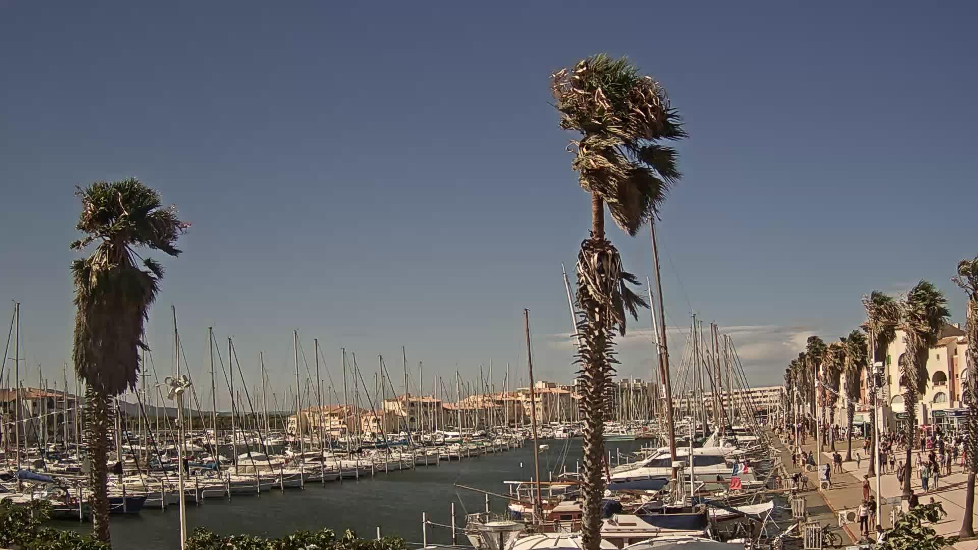 Webcam Port Leucate: Leucate-Le Port