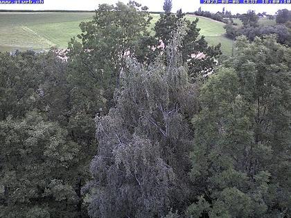 Häfelfingen: Blickrichtung Hof Horn, Buckten, Rümlingen