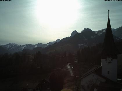 Oberwil: Simmental
