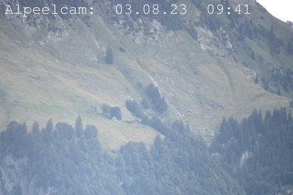 Sennwald: Alpeelcam
