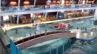 Mikulov: Pasohl�vky Aqualand Moravia - Recent