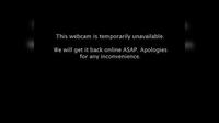 Hamilton › North: SH Cobham Dr Roundabout - Day time