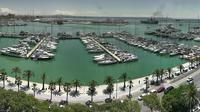 Palma: Port de Palma - Actuales