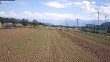 Rubigen: Sicht in Richtung Berner Oberland