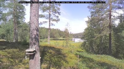 Vista de cámara web de luz diurna desde Fjorda › North East: Svarttjern