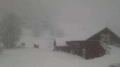 Vista de cámara web de luz diurna desde Fune: Hjartdal, Haugan mot Rennavaten