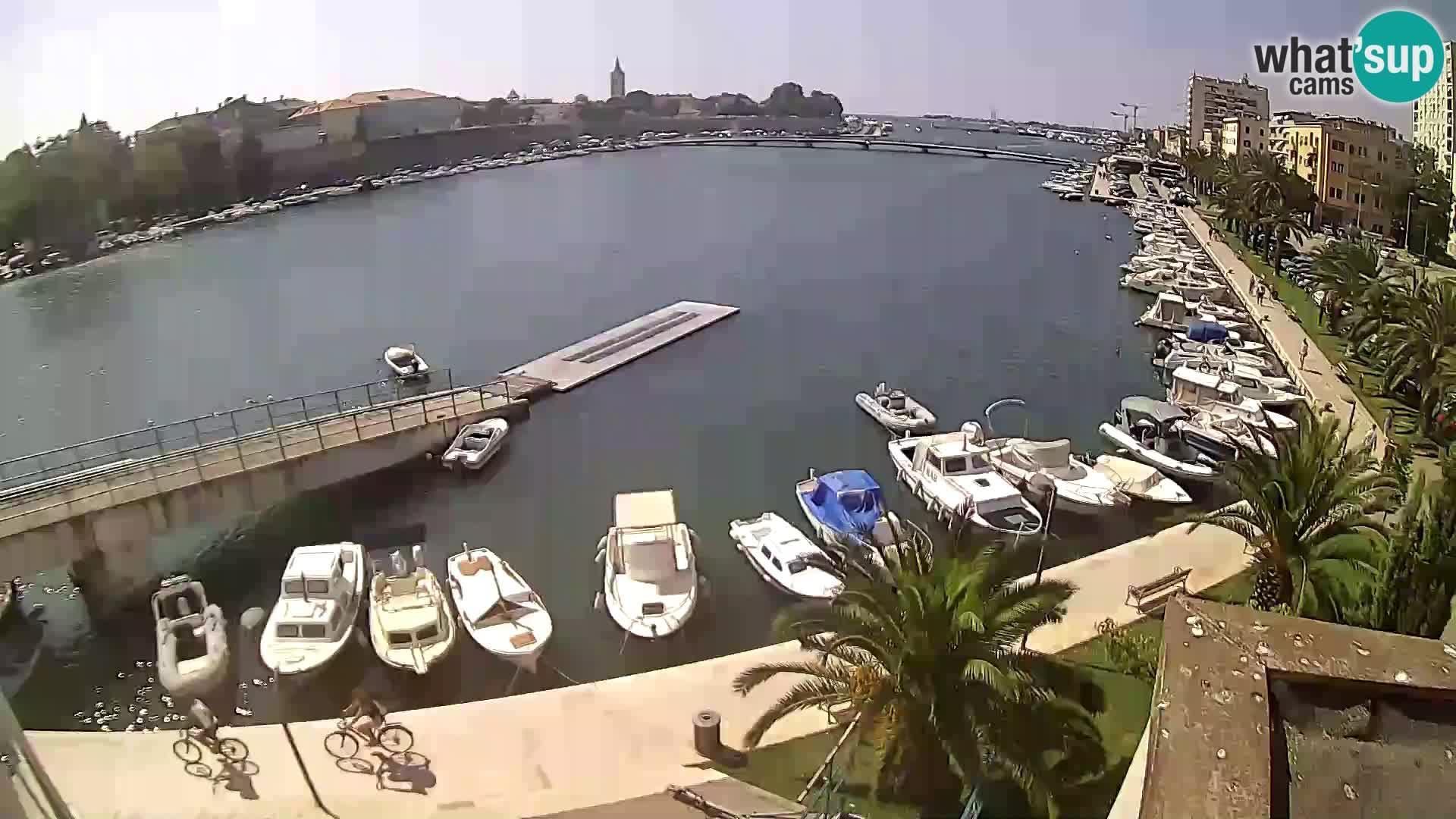 Webcam Zadar: panorama