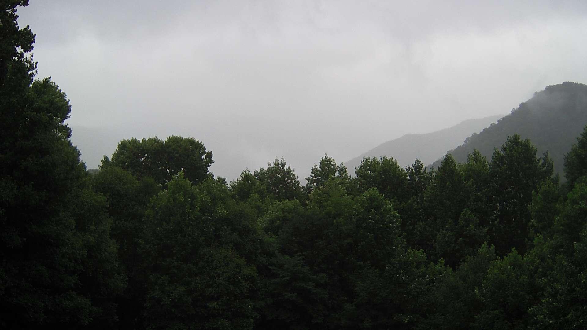 Webkamera Pensacola › South-East: United States: Black Mount