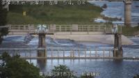 Hamura: Tama River - Recent