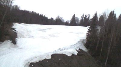 Webkamera Nuuksionpää: Swinghill1