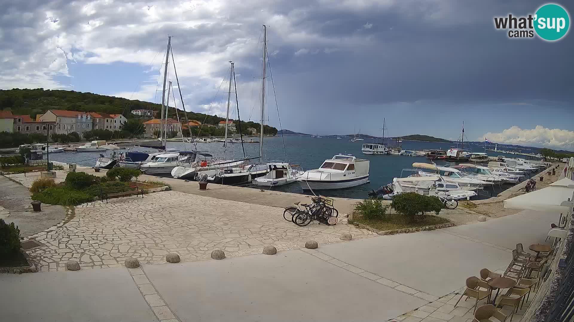 Webcam Zlarin: marine