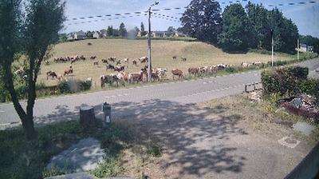 Webkamera Goé: Wesertalwetter