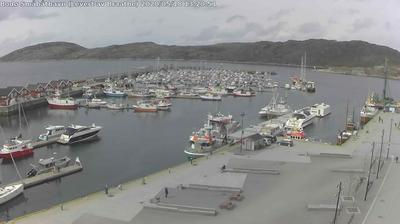 Daylight webcam view from Bodø: Bodø Småbåthavn