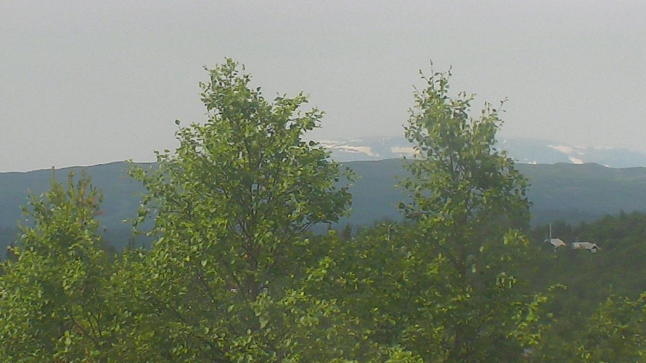 Webkamera Opeim: Økne omrade