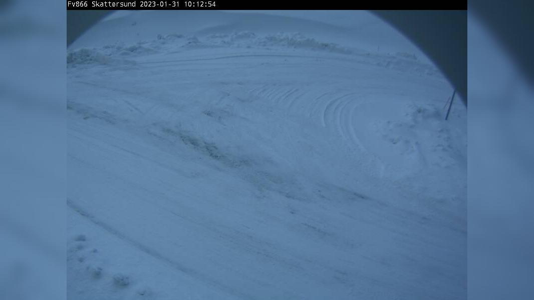 Webcam Finneidet: F866 Skattørsund (22 moh)