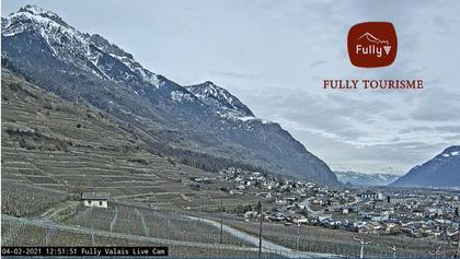 Fully: Webcam de