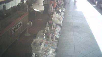 Tageslicht webcam ansicht von Ota: 川崎評判堂