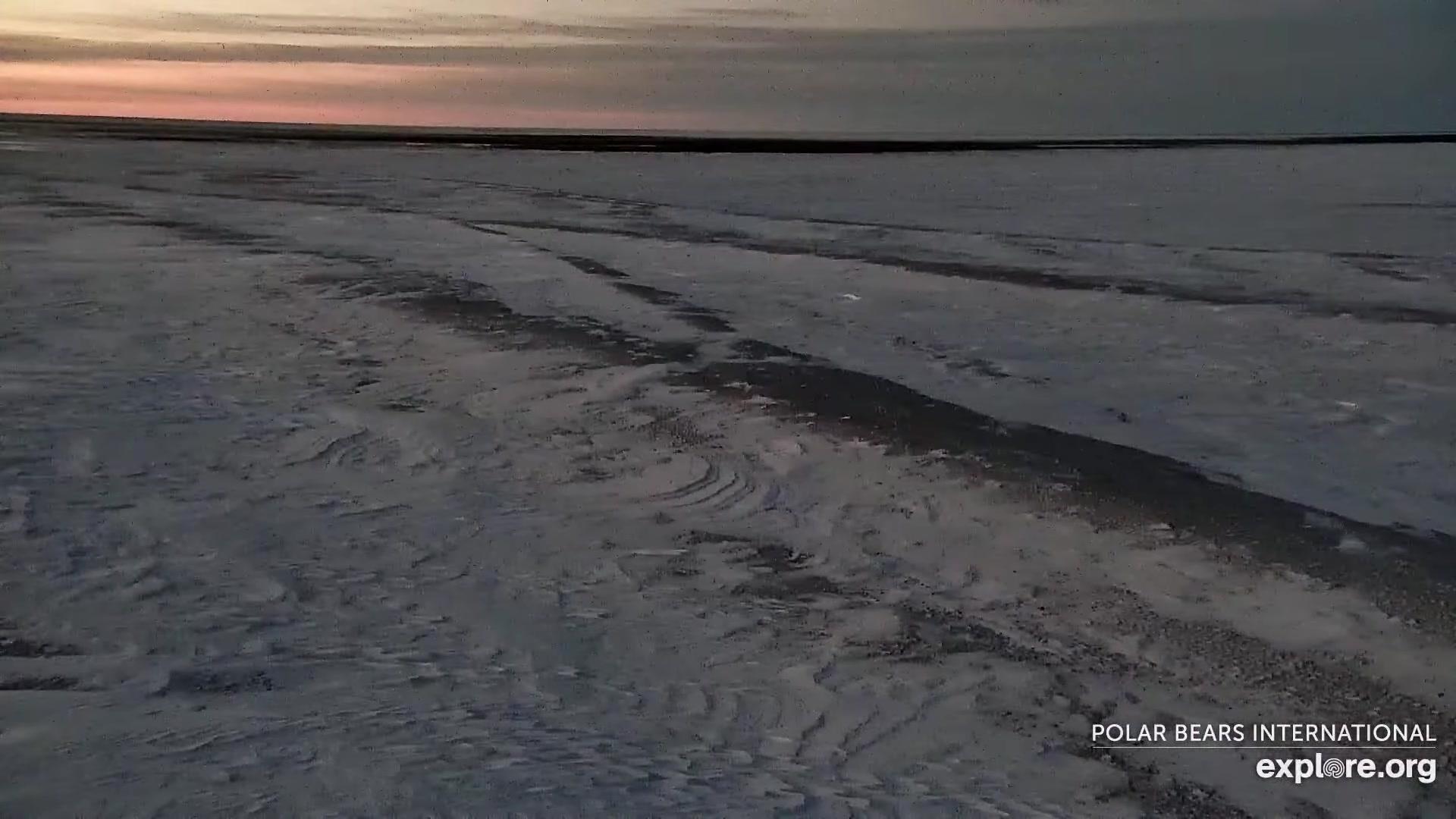 Manitoba: Wapusk National Park