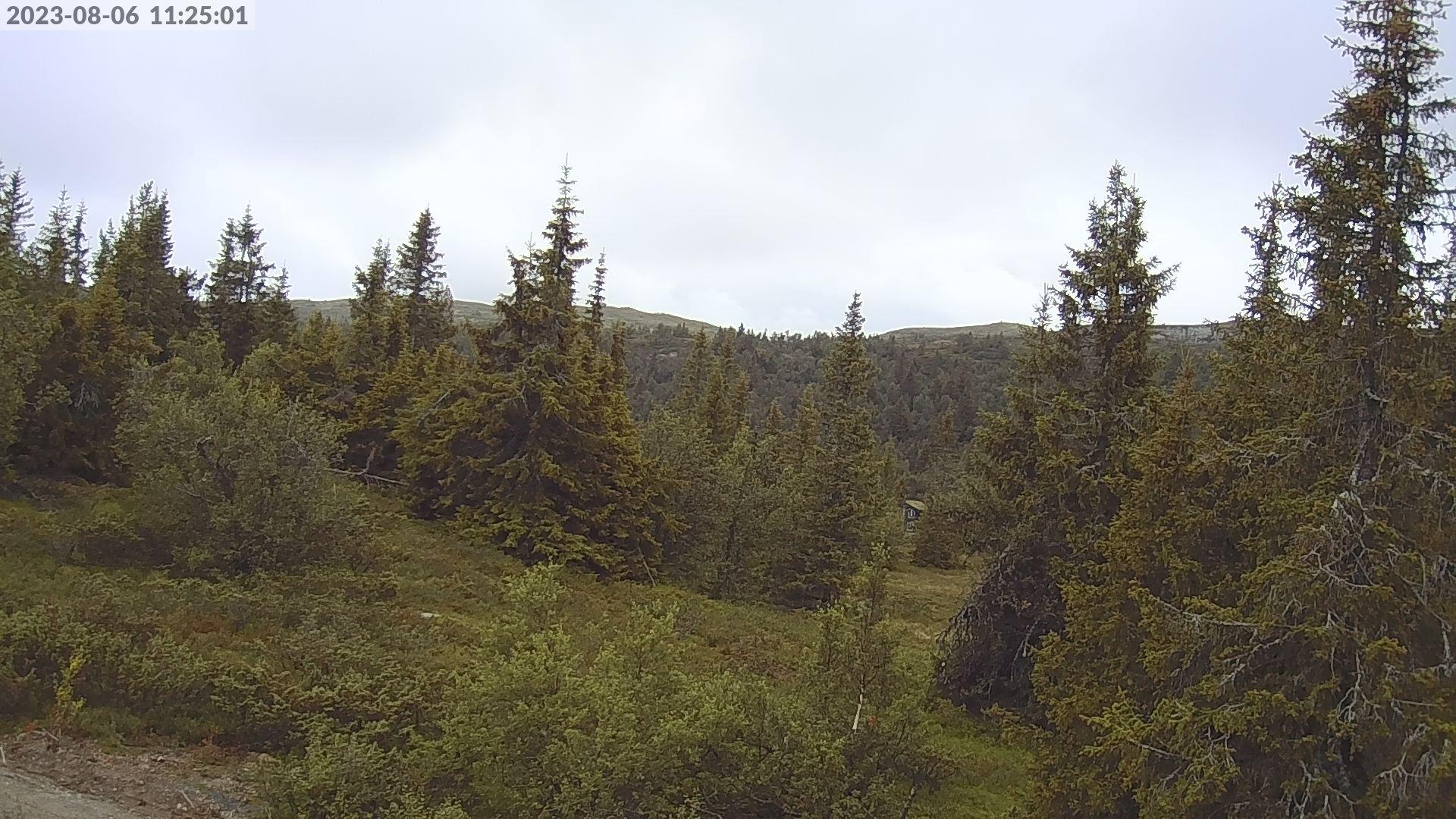 Webcam Gamlestølen › North-East