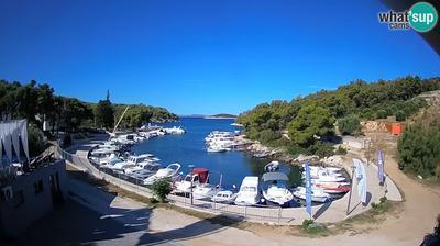 Current or last view from Tribunj: Sovlje, marine & bay