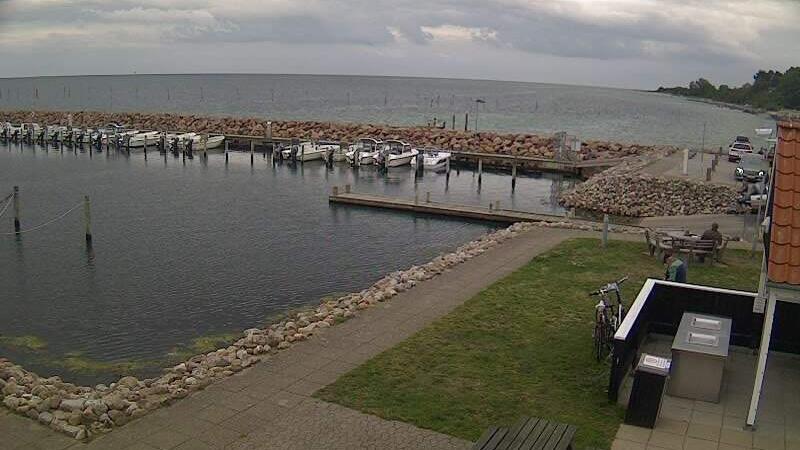Webkamera Spodsbjerg: havn ost
