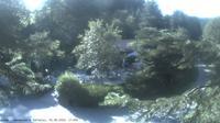 Baiersbronn: Wanderhütte Sattelei - Recent