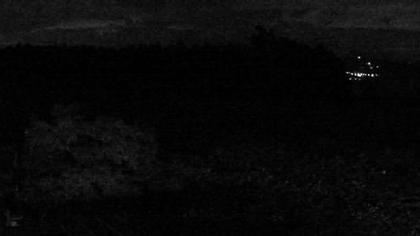 Weinfelden: Stelzenhof