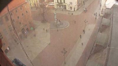 Webcam Stare Miasto: Town hall, Toruń