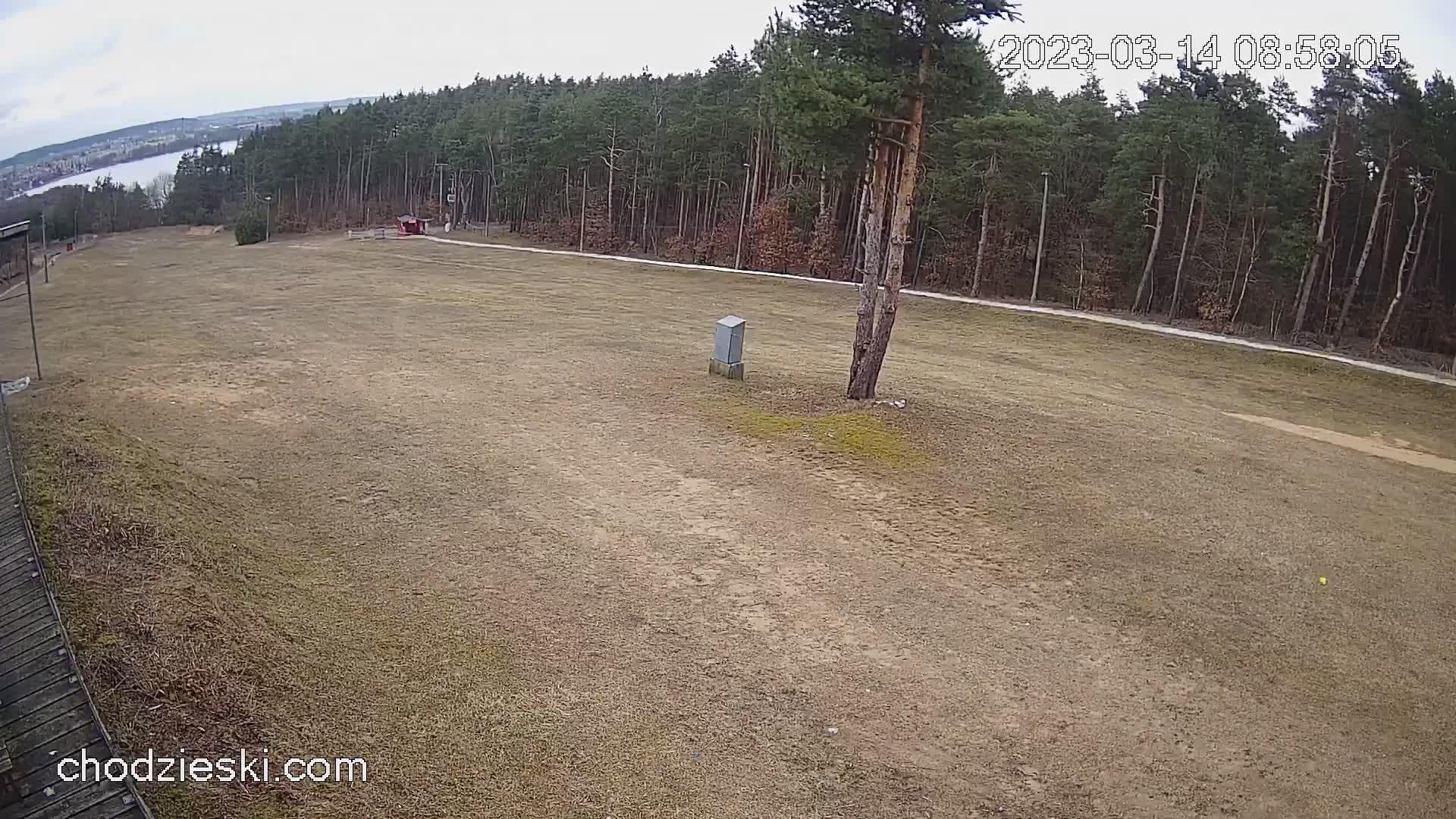 Webcam Chodzież: Ski slope