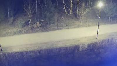 Webcam Przymorze Wielkie: Ronald Reagan Park, Gdańsk