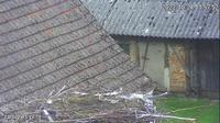 Lubowidz: Ługi - Storks, Lębork - Overdag