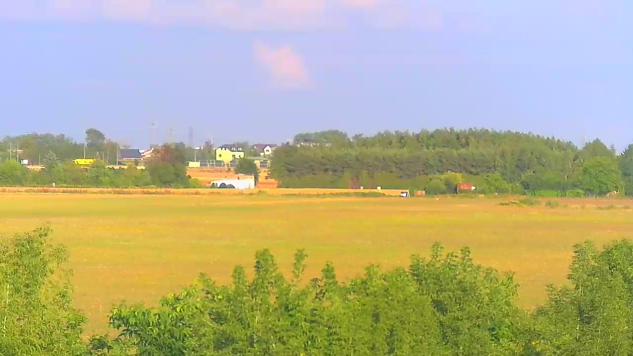 Webcam Kostrogaj: Aeroklubie Ziemi Mazowieckiej, Plock