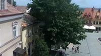 Sandomierz: Market Square - Dia