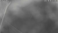 Bonaire: Donkey Sanctuary - Recent