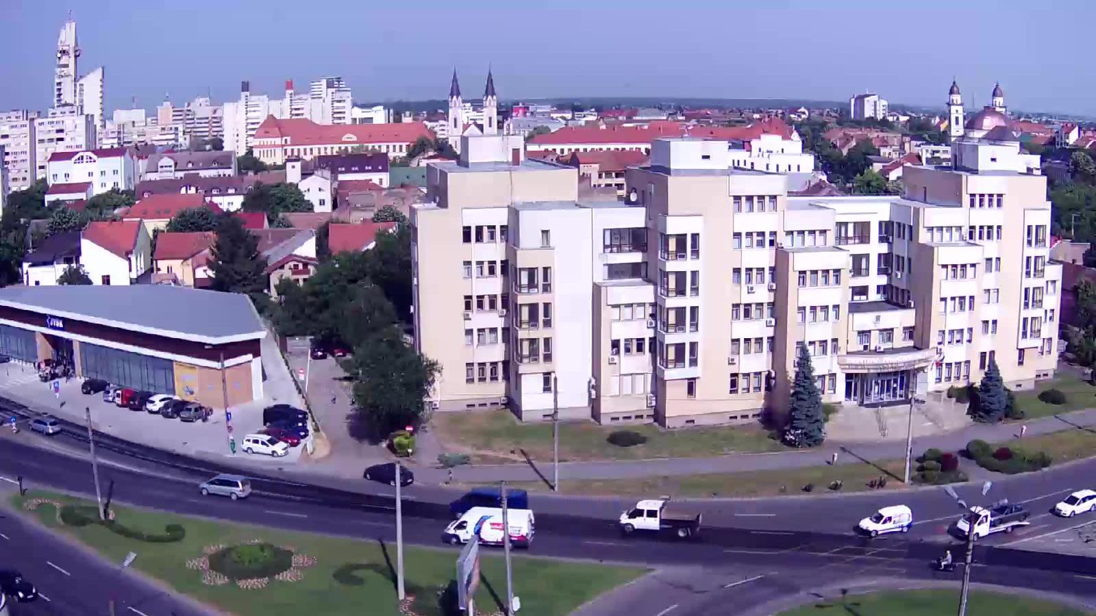 Live Satu Mare