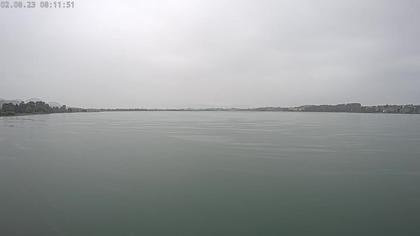 Pfäffikon › Süd: Seerettungsdienst Pfäffikon ZH (Im Notfall Tel. 118) - Naturzentrum Pfäffikersee - Pfäffikon ZH - Pfäffikersee