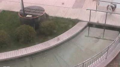 Daylight webcam view from Mustamäe linnaosa: Tallinn Nõmme