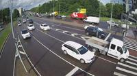 Tallinn: Traffic - Dia