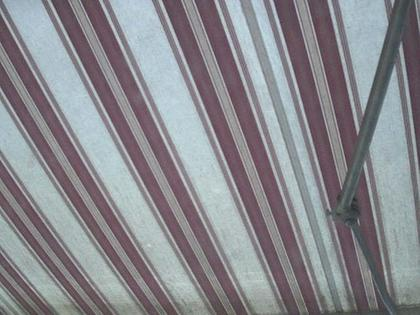 Zollikofen: Mormon Temple - Bern - view out of the Computer-Helpcenter Shop-Windows