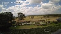 Nanyuki › East: Mount Kenya - Day time